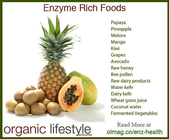 Enzyme Rich Foods