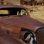 An Ode to an Older Car