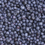 The SuperFood Power of Blueberries