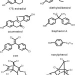 Xenoestrogenic Chemicals