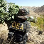 Congress Passes Bill to Block Feds From Targeting Medical Marijuana and Industiral Hemp Cultivation
