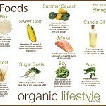 Understanding and Detoxifying Genetically Modified Foods