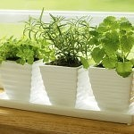 Improve Indoor Air Quality to Promote Health