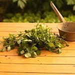 Herbs With Healing Properties You Can Grow at Home