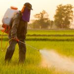 PCBs, Roundup, and Dicamba – Monsanto's Current Problems