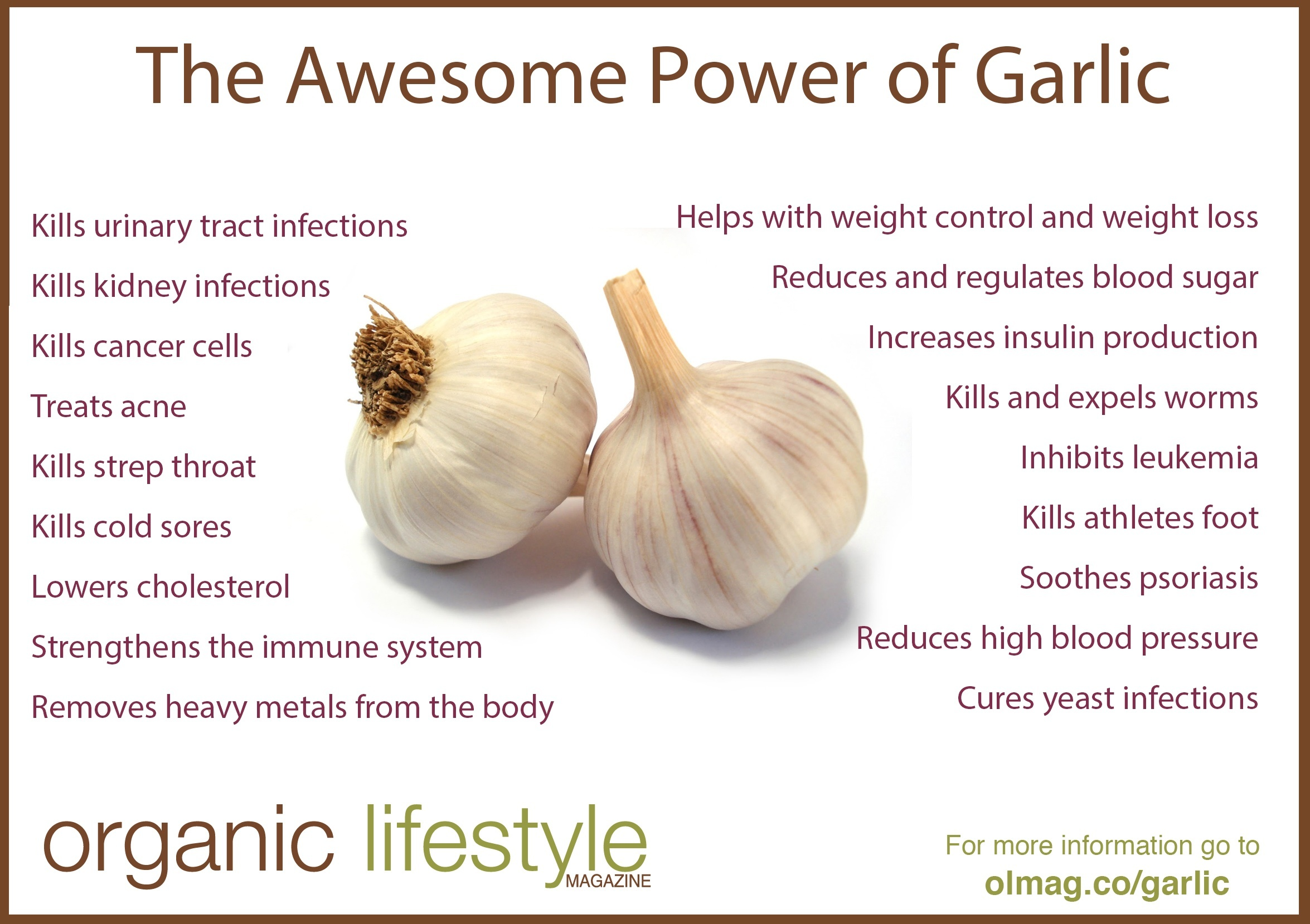 garlic – the most amazing herb on the planet
